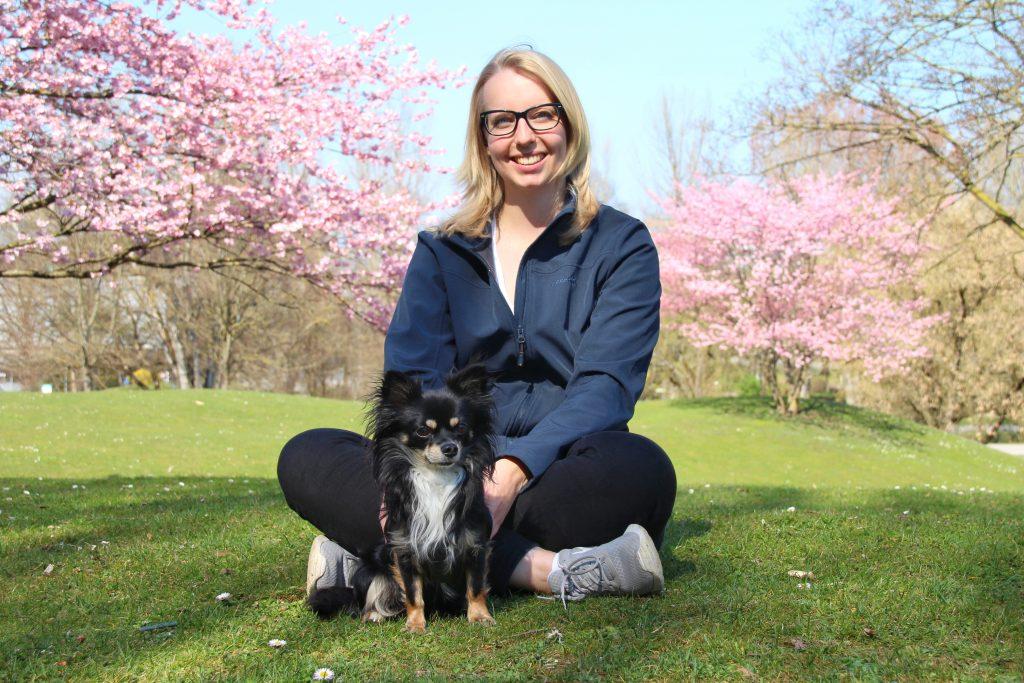 Hundetraining, Hundeernährungsberatung, Hundeschule