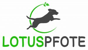 Hundetraining, Hundeernährungsberatung, Hundeschule, Naturheilkunde